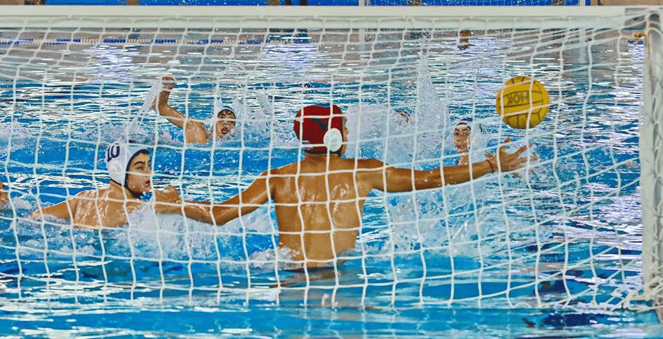https://foivoswaterpolo.gr/wp-content/uploads/2020/03/29790169_1893209194037211_3192179885564415974_n.png